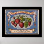 KRW Vintage Strawberry Fruit Crate Label Poster
