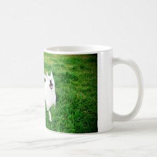 Krystal tazza white coffee mug