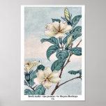 Kuchi nashi - cape jasmine / by Megata Morikaga Uk Posters