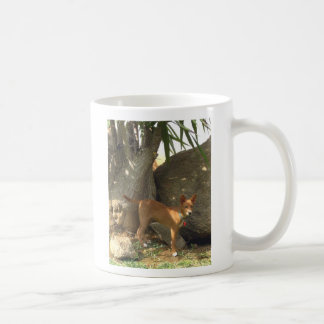 Kudo of Jamul Coffee Mug
