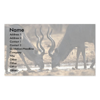 Kudos Double-Sided Standard Business Cards (Pack Of 100)