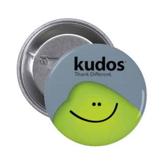 Kudos® Gray Pins