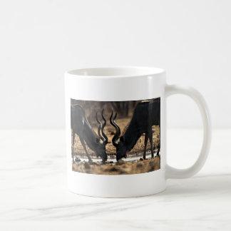 Kudos Mugs