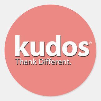 Kudos® Salmon Classic Round Sticker