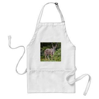 Kudu. Delantales