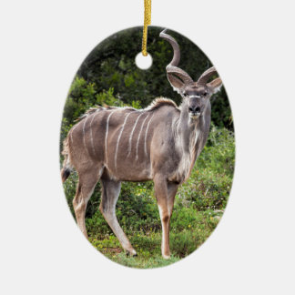 Kudu. Double-Sided Oval Ceramic Christmas Ornament