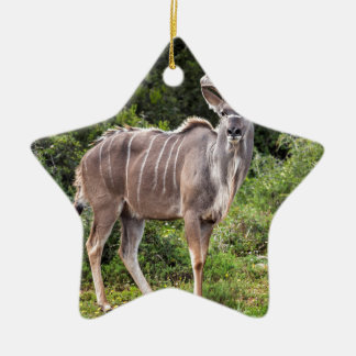 Kudu. Double-Sided Star Ceramic Christmas Ornament
