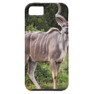 Kudu. iPhone 5 Case-Mate Fundas