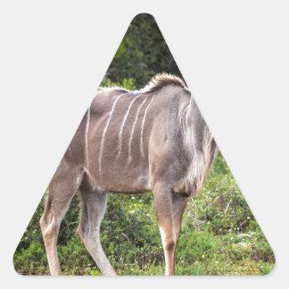 Kudu. Pegatina De Triangulo