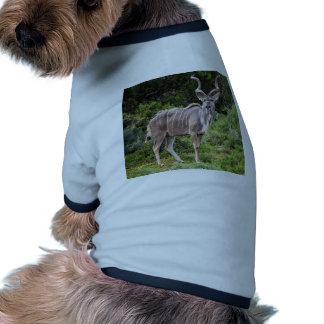Kudu. Camiseta De Perrito