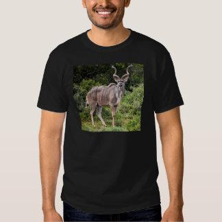Kudu. T-Shirt