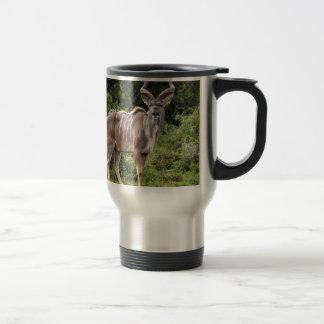 Kudu. Taza Térmica