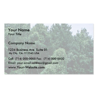 Kudzu/ Overgrown Forest Double-Sided Standard Business Cards (Pack Of 100)