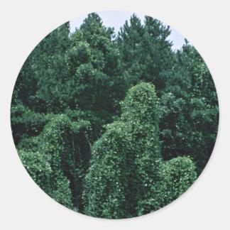 Kudzu/ Overgrown Forest Stickers