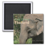 Kuet Chang Thailand Elephant Fridge Magnets
