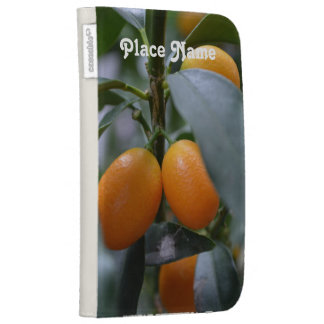 Kumquat Case For The Kindle