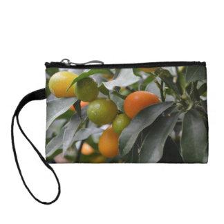 Kumquats de la Corea del Sur