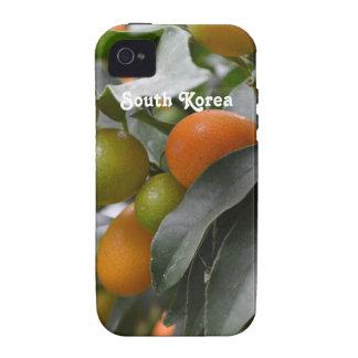 Kumquats de la Corea del Sur Case-Mate iPhone 4 Carcasa