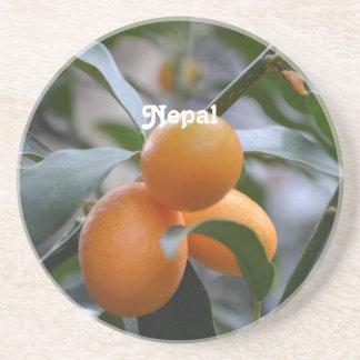 Kumquats de Nepal Posavasos Cerveza