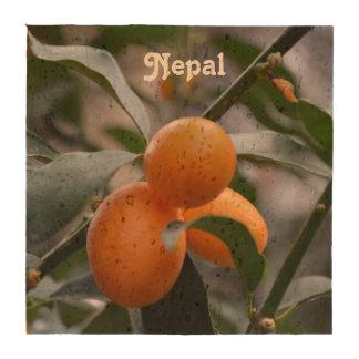 Kumquats de Nepal Posavasos