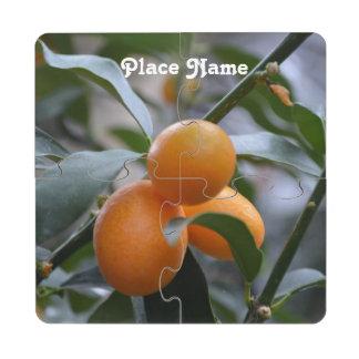 Kumquats de Nepal Posavasos De Puzzle