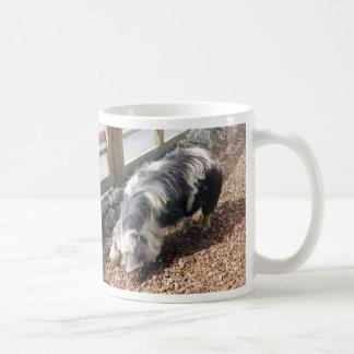 Kunekune Pig Coffee Mug