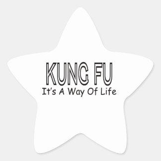 Kung Fu es una manera de vida Calcomania Forma De Estrella Personalizadas