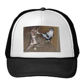 Kung Fu Kitty Trucker Hat