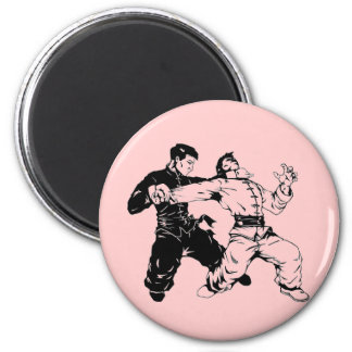 kung fu sweep magnet