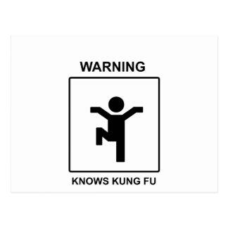 Kung Fu Tarjetas Postales