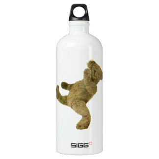 Kung Fu Teddy Aluminum Water Bottle