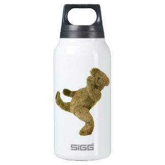 Kung Fu Teddy Thermos Water Bottle