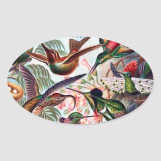 Kunstformen Der Natur Hummingbird Interpreted Pegatina Ovalada