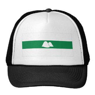 Kurgan Oblast Flag Trucker Hat