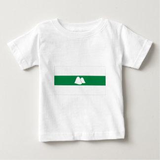 Kurgan Oblast Flag Tee Shirts