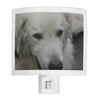 Kuvasz Dog Breed Night Light
