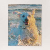 Kuvasz Dog. Jigsaw Puzzle