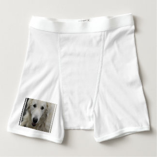 Kuvasz Dog Boxer Briefs