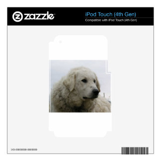 Kuvasz.png Decals For iPod Touch 4G