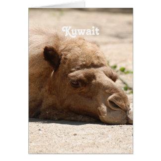 Kuwait Camel Greeting Cards