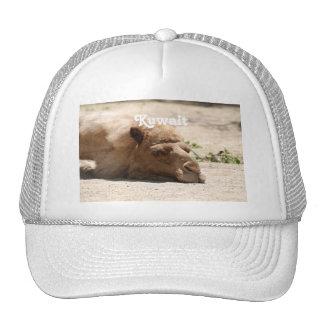 Kuwait Camel Hat