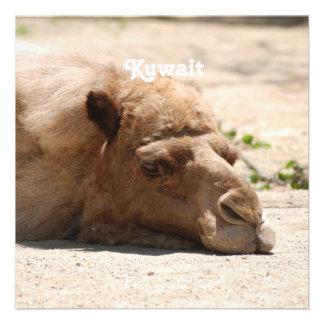 Kuwait Camel Custom Invites