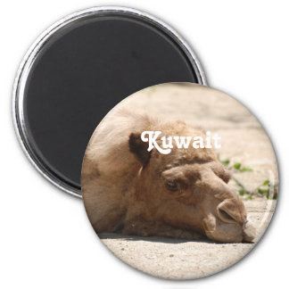 Kuwait Camel Refrigerator Magnets