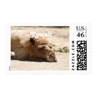 Kuwait Camel Postage Stamp