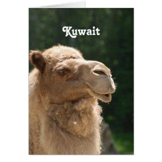 Kuwaiti Camel Cards