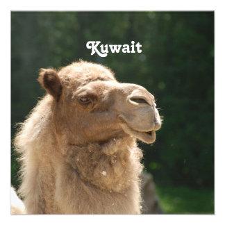 Kuwaiti Camel Personalized Invitations