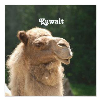 Kuwaiti Camel Invitation