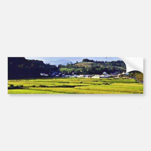 Kyongsangnam-Do - Rice Fields On Namhae Island Car Bumper Sticker