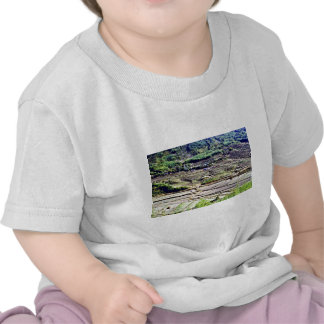 Kyongsangnam-Do - Terraced Rice Paddies T-shirt