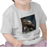 _L0S8146.jpg Camiseta